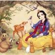 Da Alice a Biancaneve Le favole viste dall'Oriente