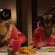 Cani e gatti, è festa un cenone speciale