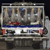 Ebola, medico Emergency in buone condizioni