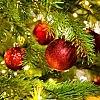 L'albero è difettoso?   Sostituzione entro Natale
