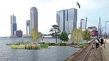 Nel parco galleggiante i rifiuti diventano giardini