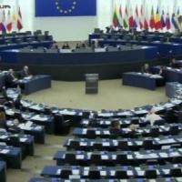 Ogm, sì europarlamento a nuove norme. Singoli stati potranno vietare coltivazioni