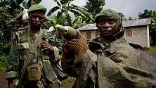 Fermare le violenze sulla natura riduce anche i crimini di guerra