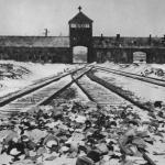 """Ad Auschwitz il mondo commemora l'Olocausto. Papa: """"Serve un futuro"""
