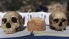 Scoperto cranio che segna passaggio da Neanderthal a Sapiens