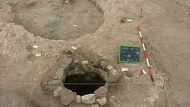 In Sardegna la vite più antica  così cambia la storia del vino