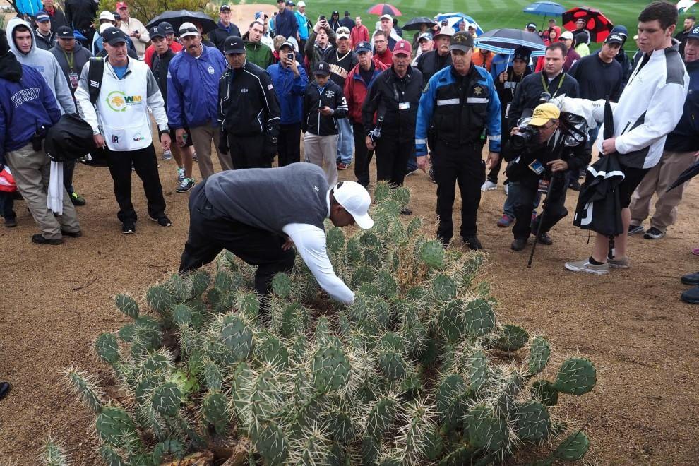 Golf, la pallina persino tra i cactus: Tiger Woods non ne indovina una
