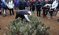 La pallina persino tra i cactus Tiger Woods mai così male