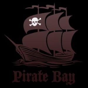 Pirate Bay torna online tra le polemiche: i fondatori esclusi dallo staff