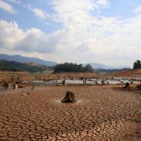 """Brasile, siccità senza precedenti dovuta alla secca dei """"fiumi"""