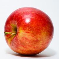La mela che non marcisce. È Ogm e in Usa si può commerciare