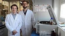 Cibi futuro, 'brevettata' la barretta energetica   a base di larve e insetti