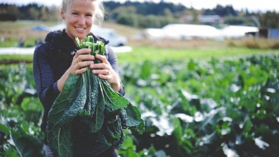 Il crowdfunding è green: arriva la prima piattaforma dedicata all'agricoltura sostenibile