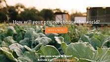 Il crowdfunding è green Ecco la piattaforma per     l'agricoltura sostenibile