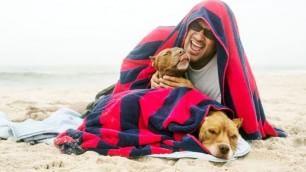 L'ultimo viaggio di Diuki, un bagno nell'oceano per il cane malato