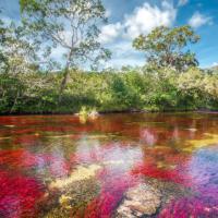 Colombia, il fiume è un arcobaleno