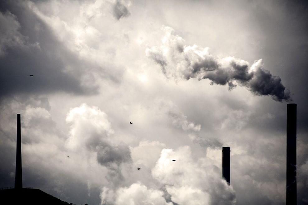 Lo scenario è inquietante: la Terra sembra disabitata