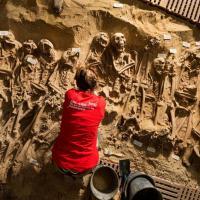Parigi, uno scavo sotto il supermercato: trovati 200 scheletri