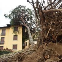 Vento forte e nubifragi: il maltempo spazza l'Italia