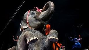 Ringling Brothers Circus ''Dal 2018 stop a uso elefanti''
