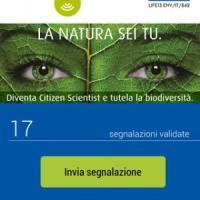 """Da clima a mare, con app tutti diventiamo """"citizen scientist"""""""