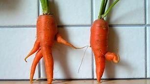 La carota danzante e il pomodoro imbronciato: brutti ma buoni