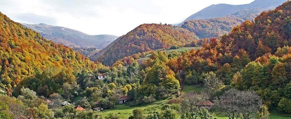 European Green Belt, le aree militari off limits ora sono santuari della natura