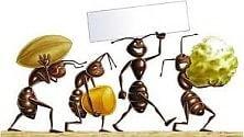 """Sono arrivate  le """"formichine salvacibo""""  No agli sprechi alimentari nelle scuole   di CHIARA NARDINOCCHI"""