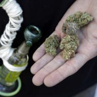 Cannabis: ecco come e perché stimola l'appetito