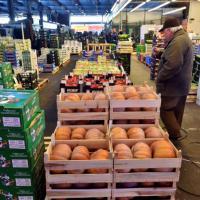 Crisi, addio dieta mediterranea: -25% olio d'oliva, -7% frutta