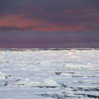 Artico, ghiaccio ai minimi storici anche d'inverno