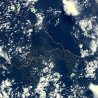 Foreste come isole: biodiversità a rischio