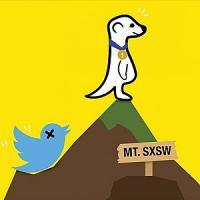 Meerkat, la app per il live streaming fa tremare Twitter
