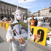 ''Pasqua senza crudeltà'', animalisti in piazza per gli agnellini