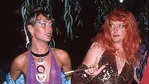 Trans, favolosi anni Settanta La storia è queer    Leggi l'articolo