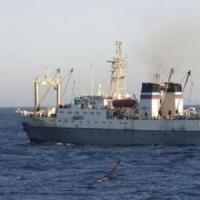 Russia, affonda peschereccio in Kamchatka: oltre 50 morti