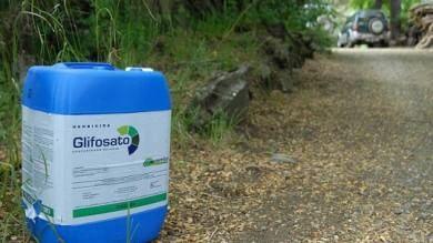 Roundup, Olanda e Francia verso il bando del pesticida bocciato dallo Iarc