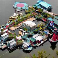In fuga dalla civiltà: la casa galleggiante tra i boschi del Canada