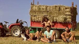 """Lavoro nei campi e mi ospitate ecco il Woofing, il turismo più """"agri"""""""