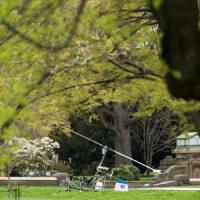 Washington, elicottero atterra sul prato del Campidoglio. Arrestato il pilota