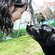 Legame tra cane e padrone basato su ossitocina