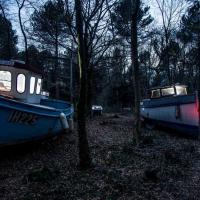 Gb, barche nel bosco: l'installazione persalvare il clima