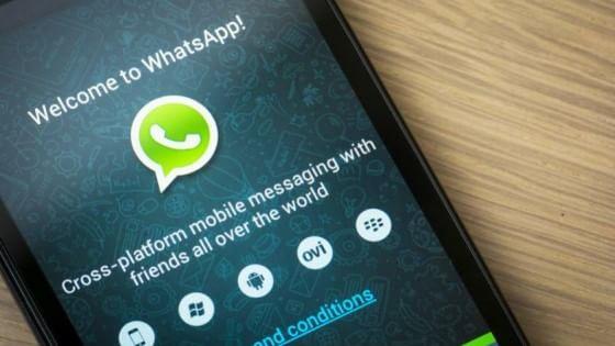 WhatsApp cresce: oltre 800 milioni di utenti attivi al mese