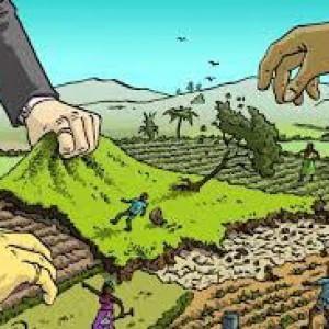 Tanzania, milletrecento famiglie espropriate della loro terra