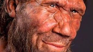 Perché siamo bianchi?   Ft   8000 anni di Dna europeo