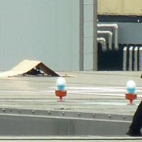 Giappone, drone su ufficio del premier, rilevata radioattività