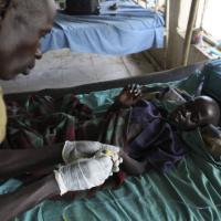 Malaria, deludenti i risultati del vaccino
