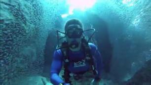 Il sub in un tunnel di pesci