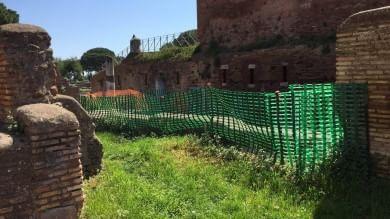 "Ostia antica, fango e melma nel ""Mitreo"" L'area archeologica nel degrado   foto"