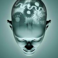 """Laura Ballerini: """"È un modello 3D che aiuterà a studiare il cervello"""""""